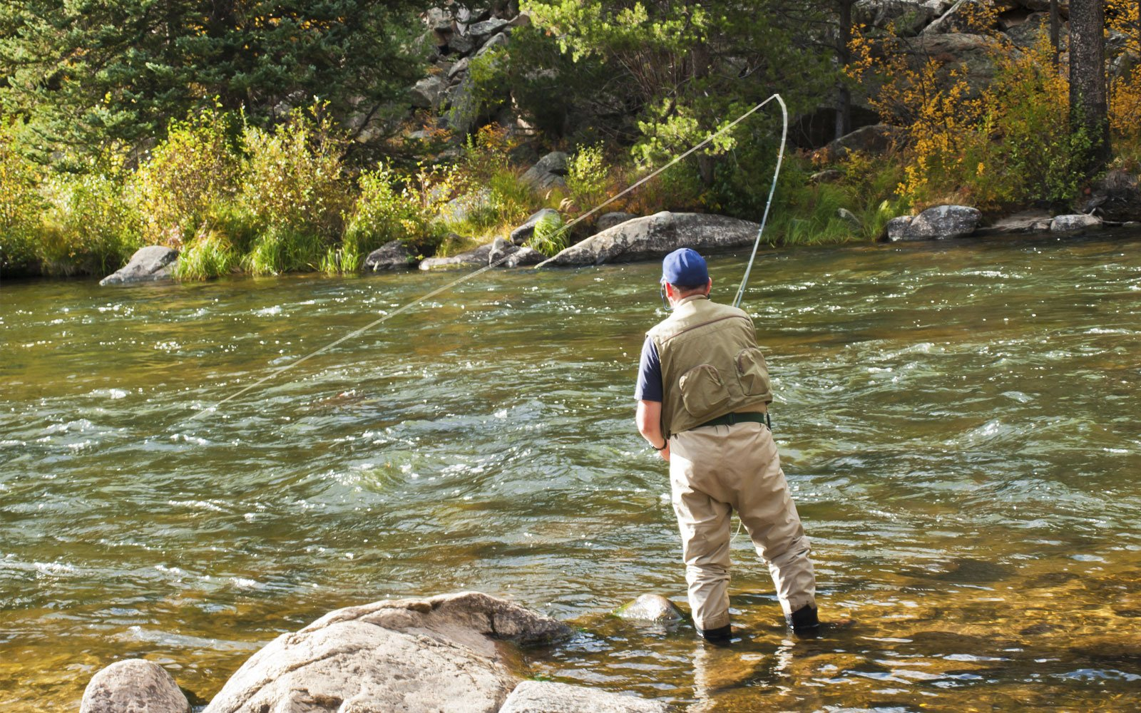 Exciting Fly Fishing In Telluride: Guided Colorado Fishing Tours